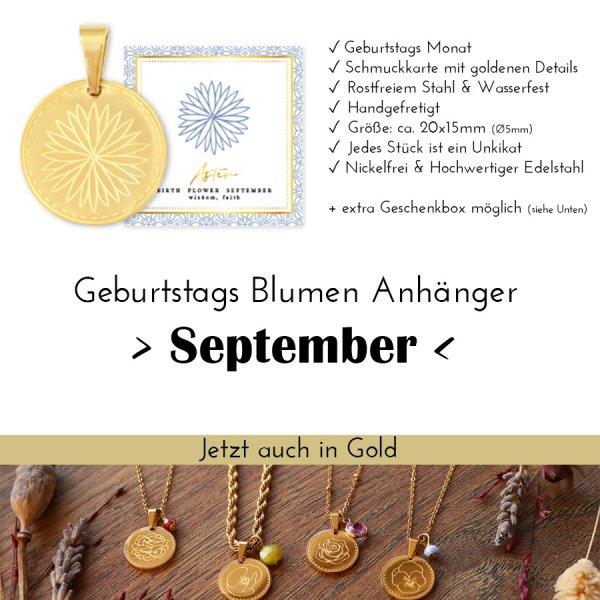 Birth Flower September - Aster in Gold